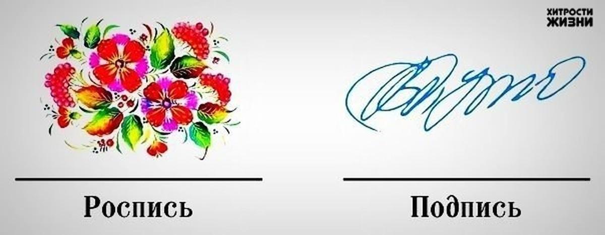 Когда говорят подпись а когда роспись