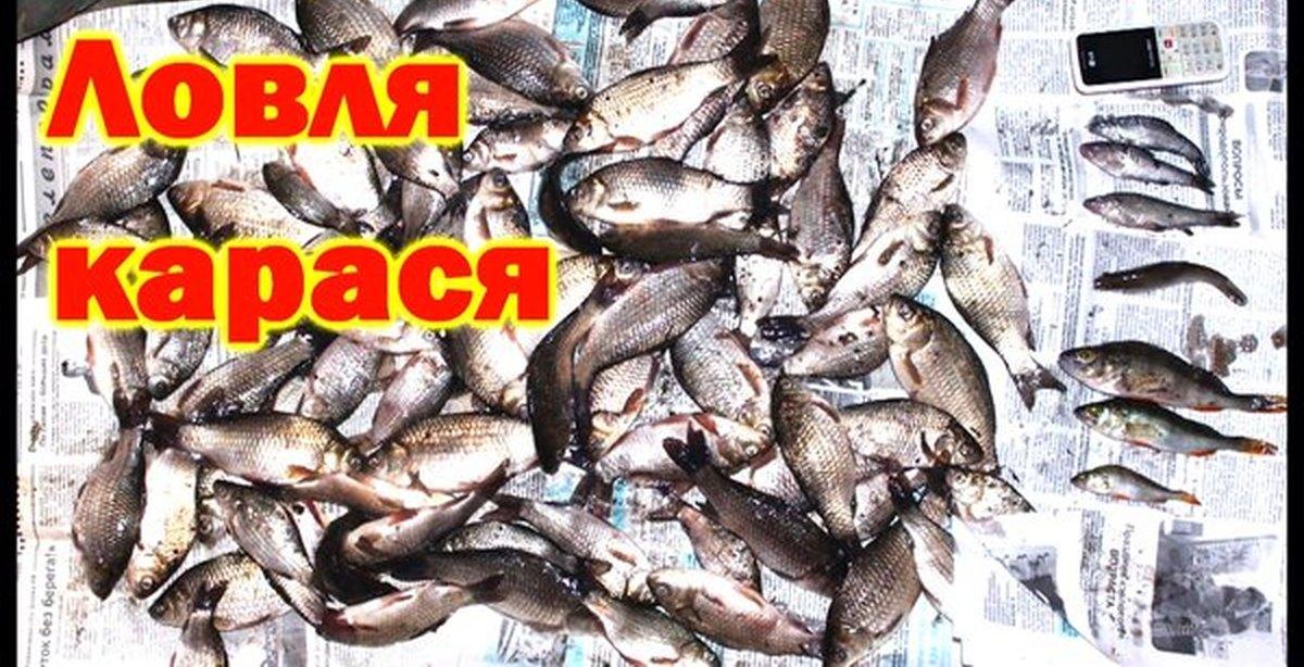 рыболовный форум о ловле карасей