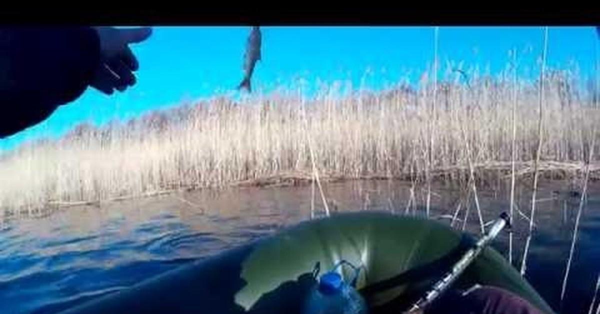 как клюет на озере чудское