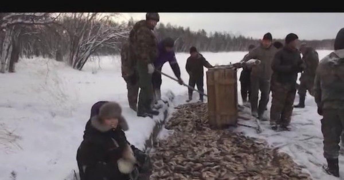 видео рыбалка в якутии 2017