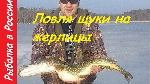 где ловить на озере жерлицами