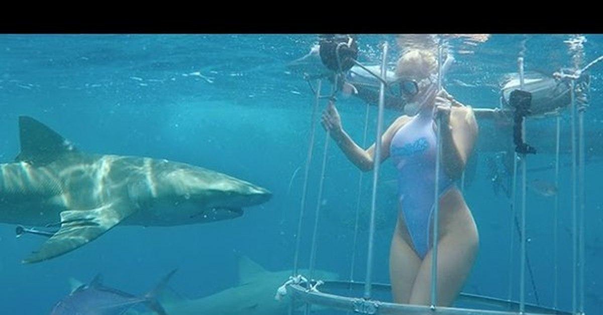 фото порно актрисы которую укусила акула